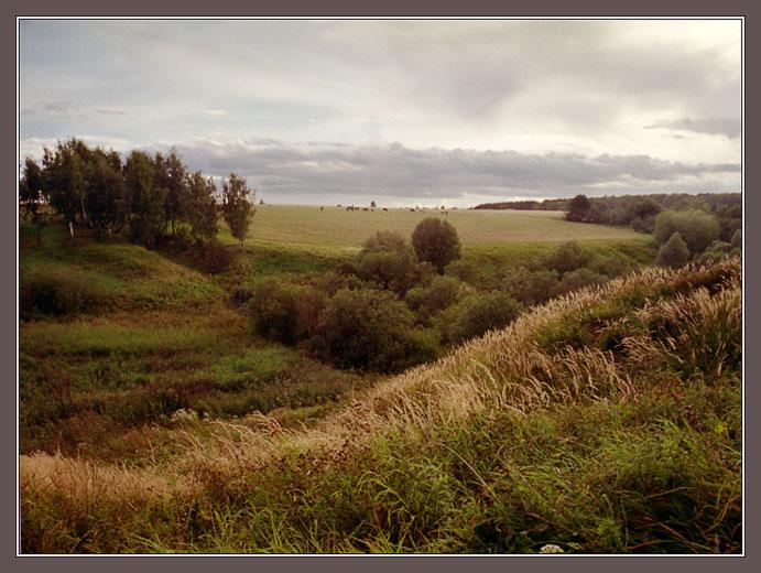 холм овраг картинки лиана