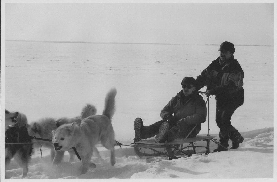 ...Среднего Урала и т.д.) Собаки породы Хаски, помесь волка и лайки.