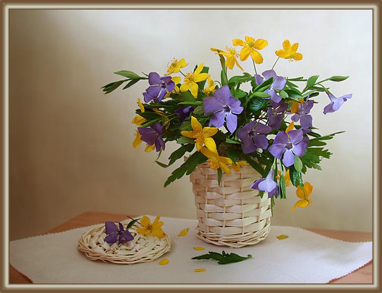 Salina :: букетик лесных цветов :: Натюрморт :: Галерея :: Клуб Foto.ru