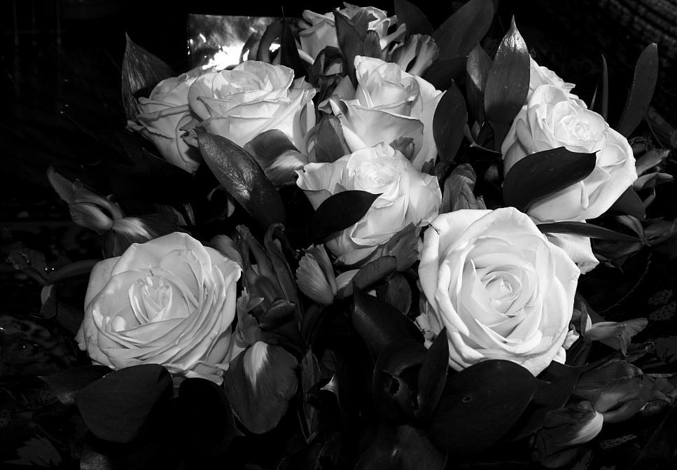 Парень с цветами картинки черно белые