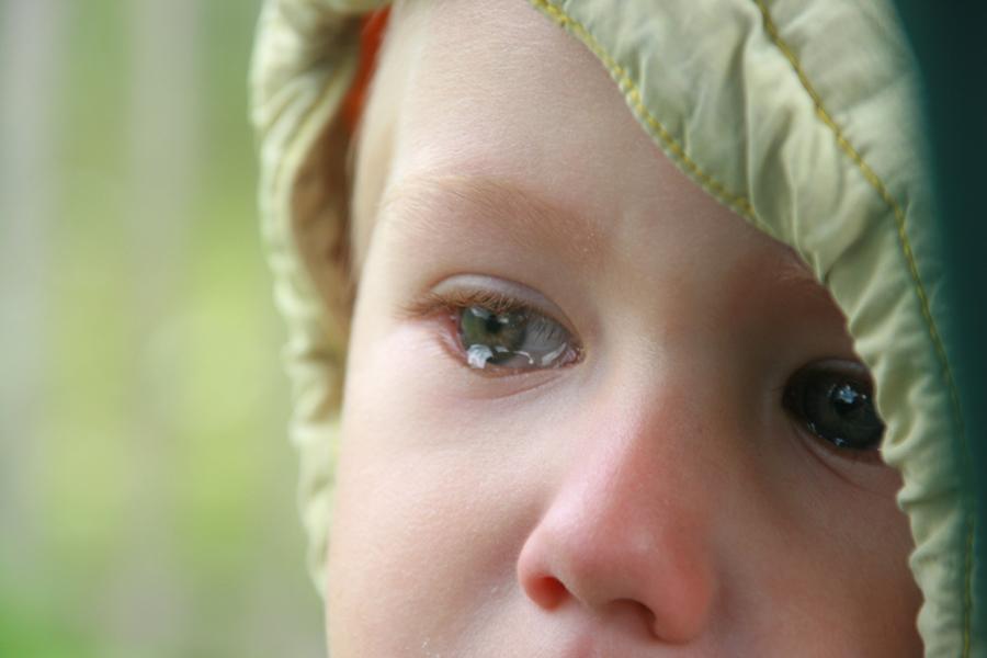 Пытается призвать взрослых к своим проблемам и не всегда слезы ребенка