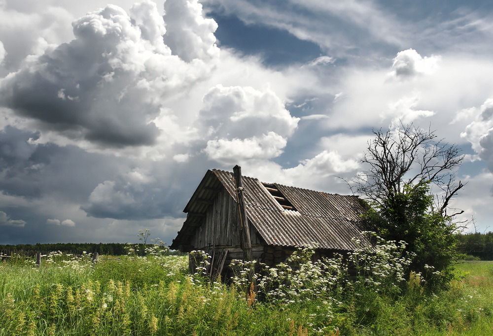 Старый дом b Стихи о любви/b.