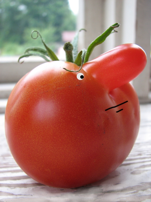 Смешные картинки с помидорами