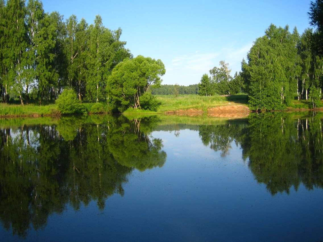http://club.foto.ru/gallery/images/photo/2009/01/07/1256823.jpg