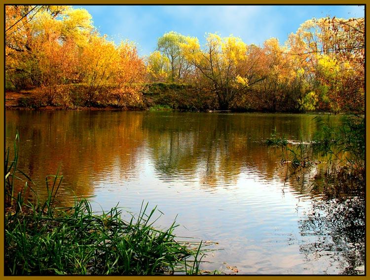 Фотография Снова осень. из раздела природа 2393955 - фото.са…