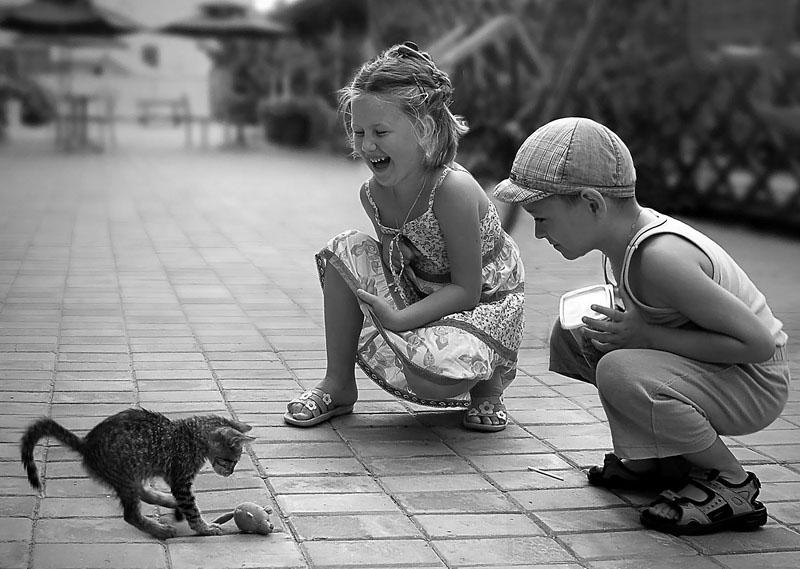 дети играют в жизнь