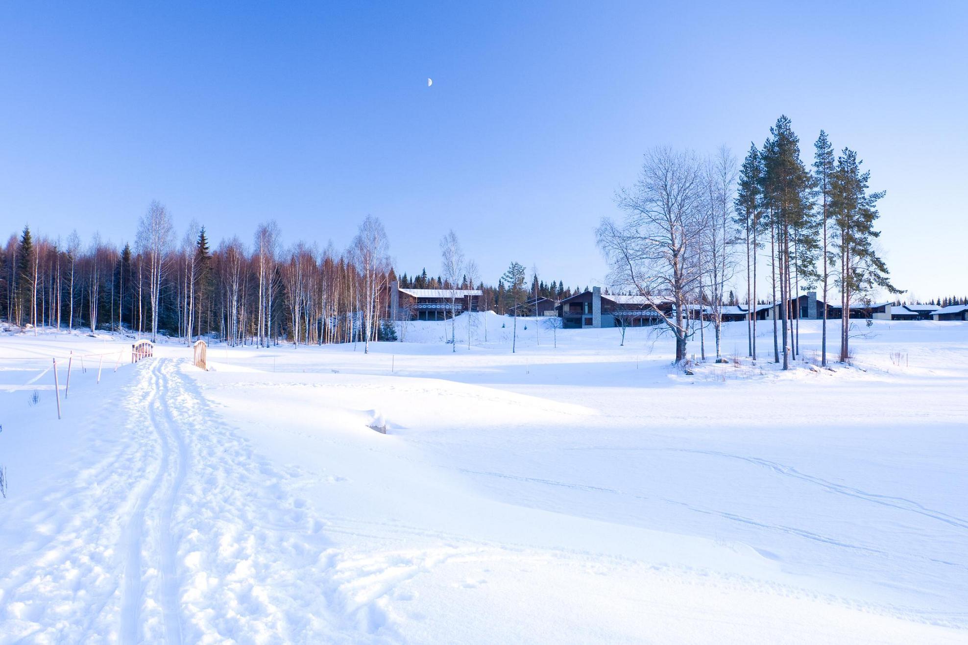 морозный день, зимы торжество, мороз и солнце