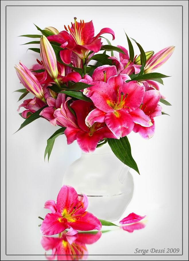 Картинки цветы нарисованные акварелью 1