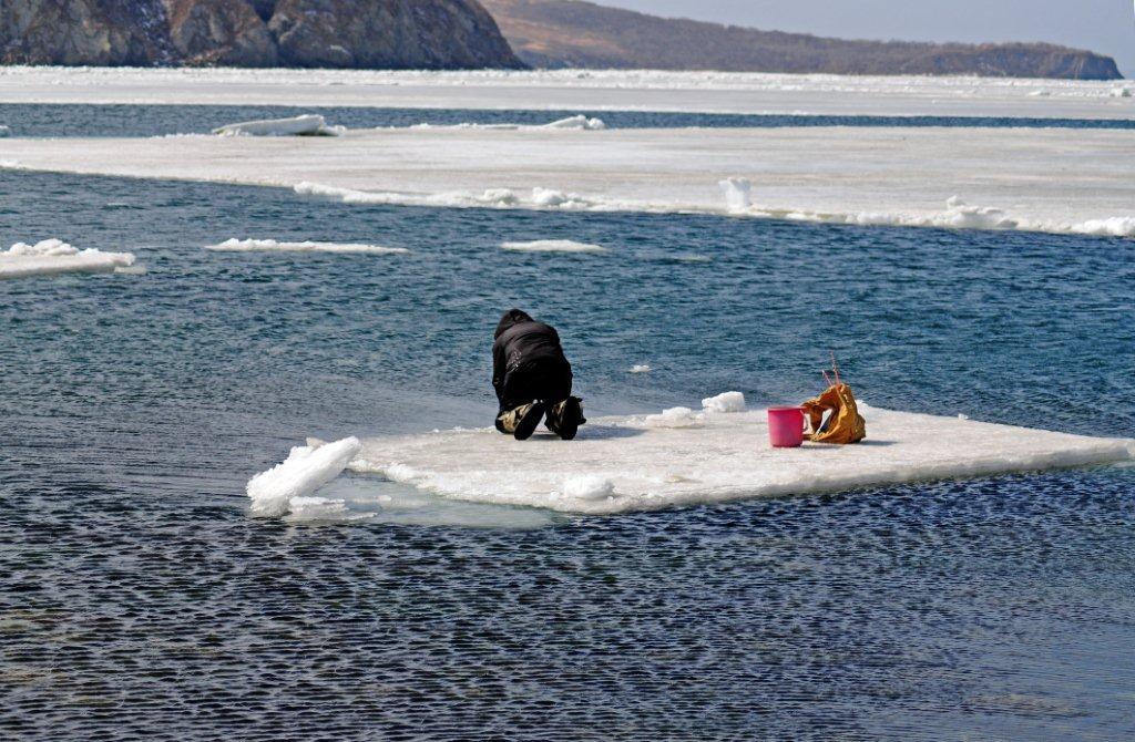 картинки человек на льдине узнаешь каждого