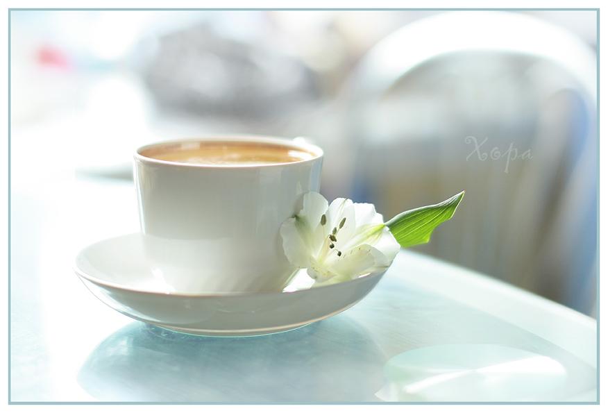 Утром чай и солнце
