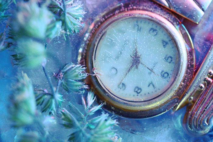 скачать торрент замороженное время - фото 2