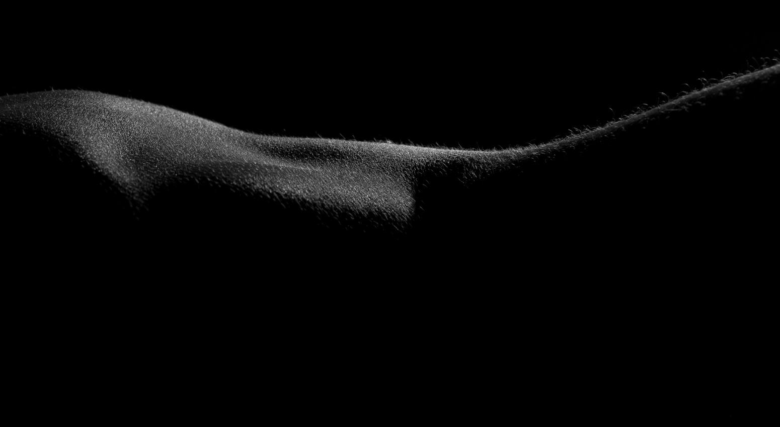 kartinki-siluet-erotika-24