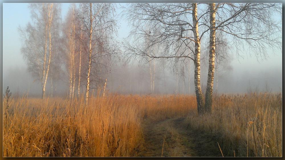 http://club.foto.ru/gallery/images/photo/2013/12/14/2240032.jpg