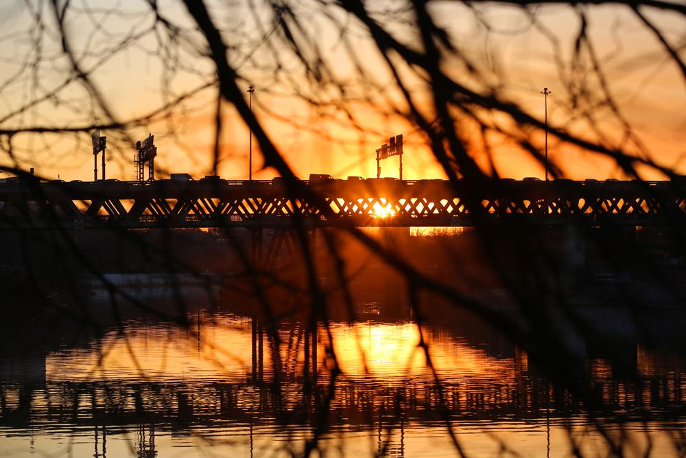 фотографировать рассвет с моста этого пернатого