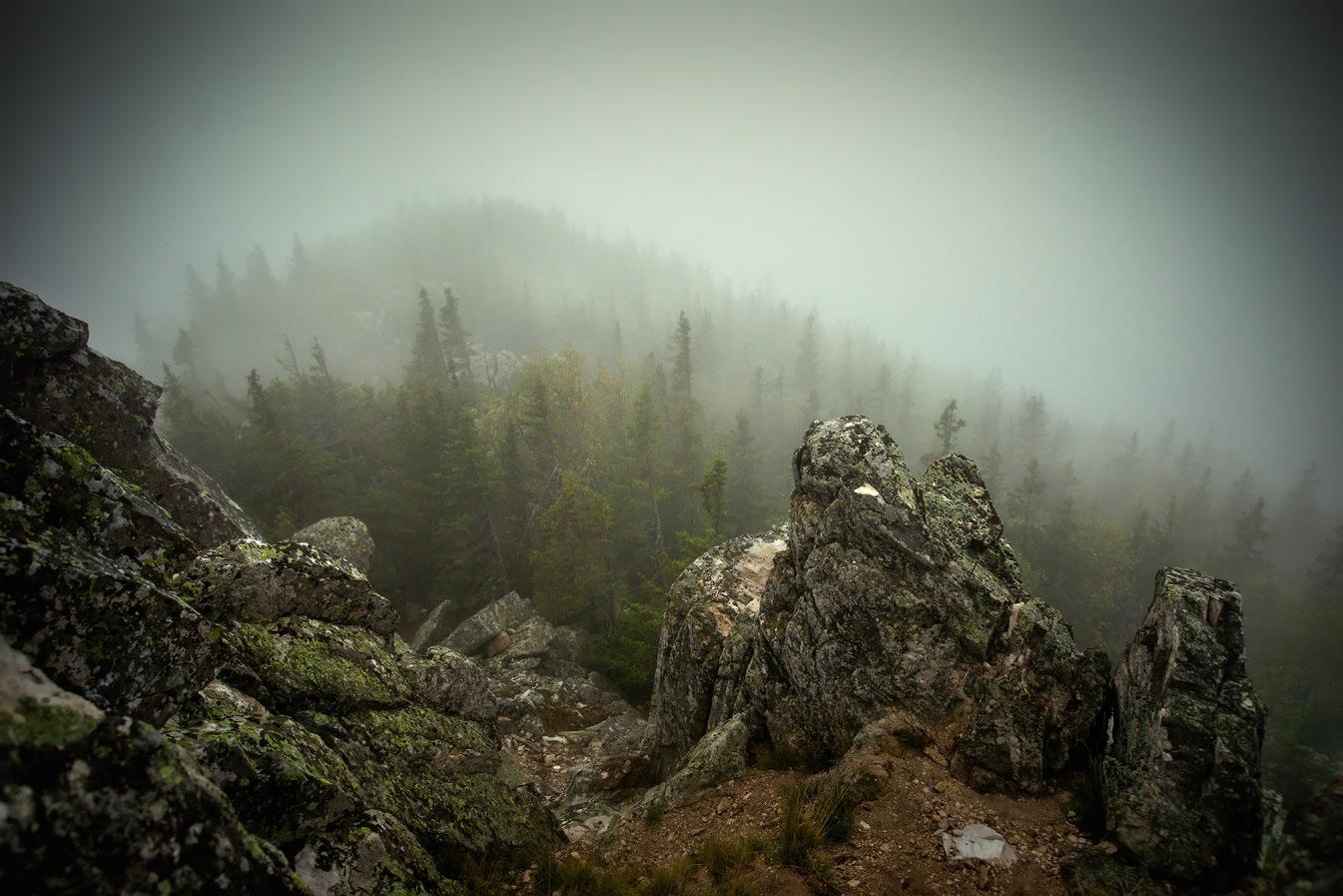 http://club.foto.ru/gallery/images/photo/2014/09/08/2319364.jpg