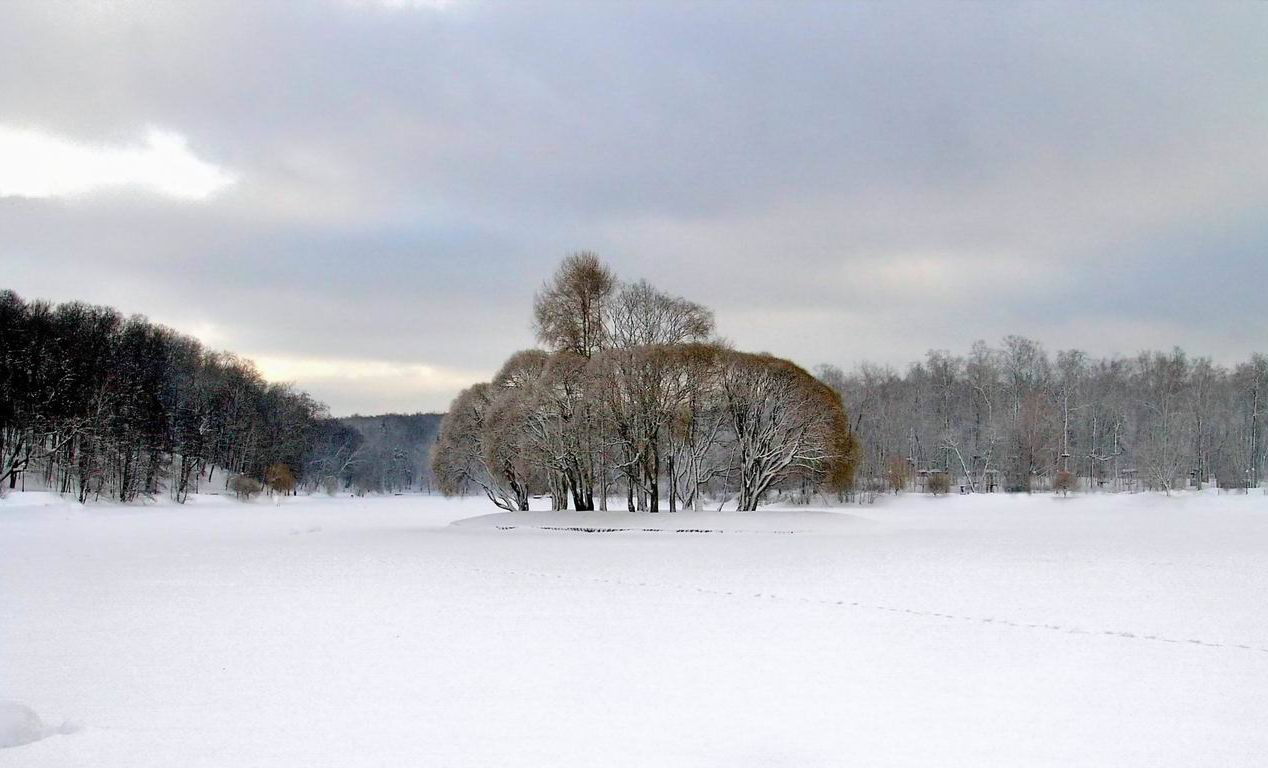Пасмурный зимний день фото дворик