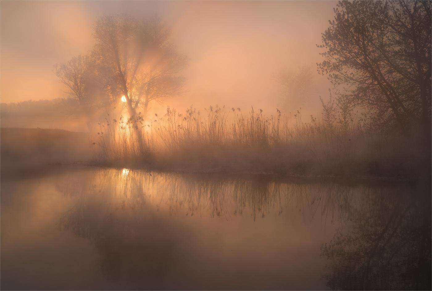 Утро на реке....