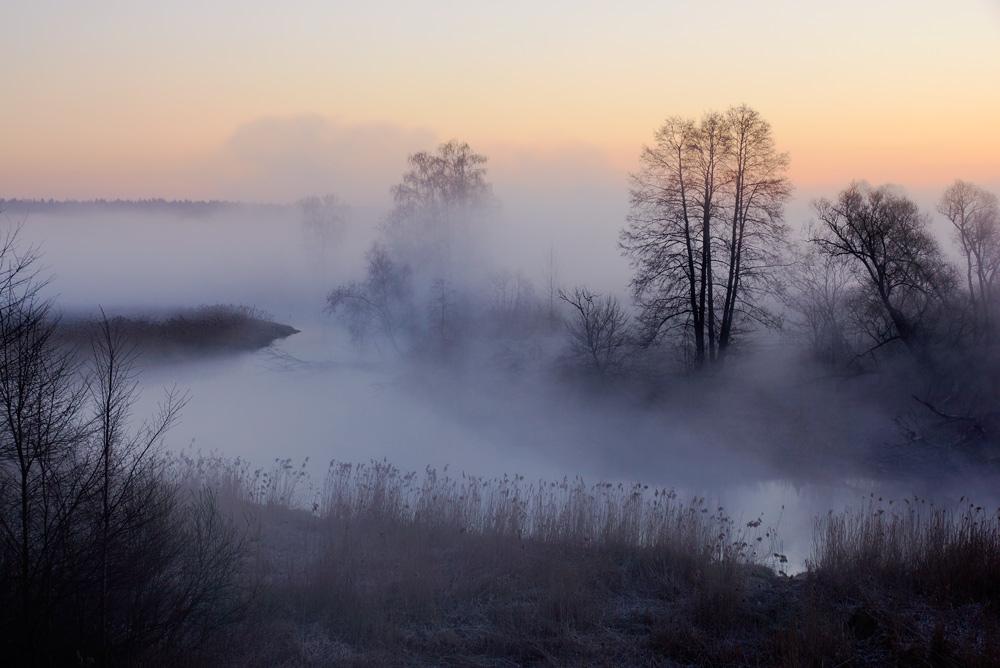 фото весна туман