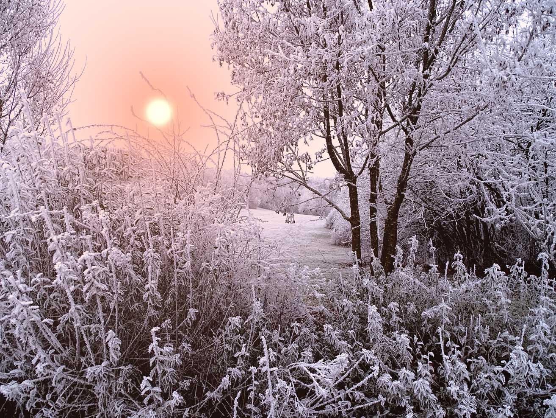 холодное утро картинки пола