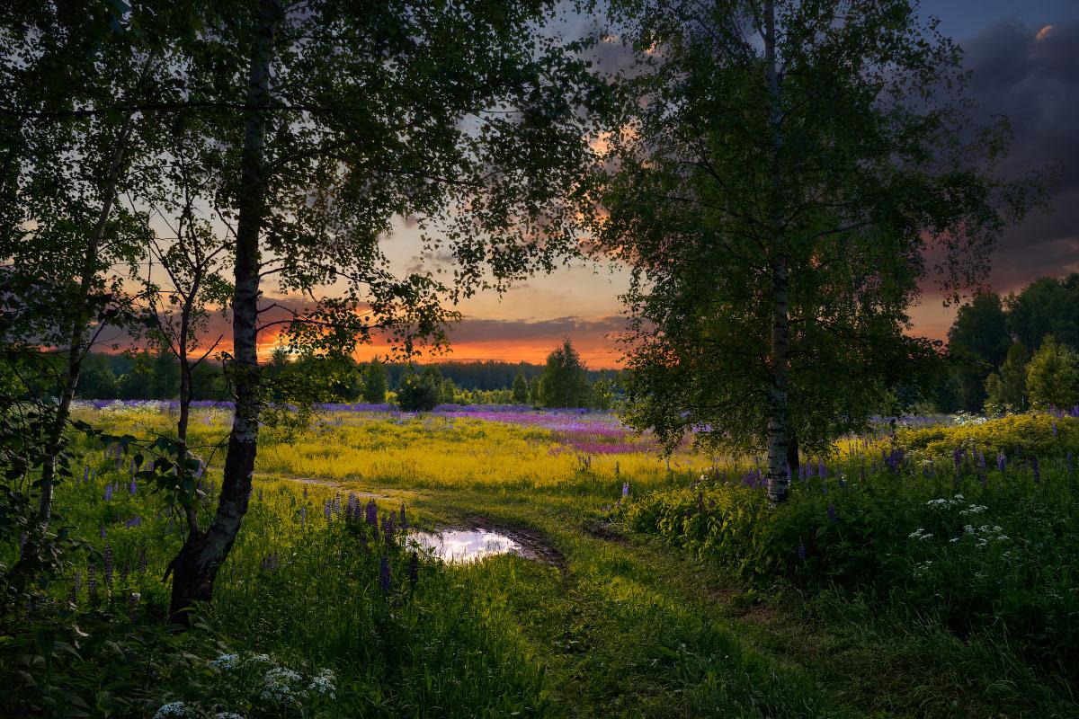 Красивые картинки русские пейзажи