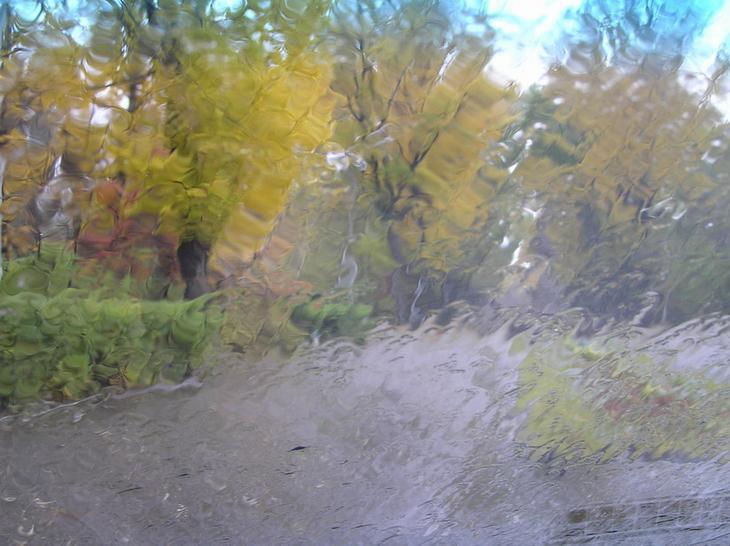 Картинки природа за стеклом