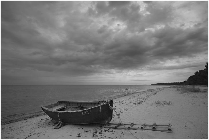 Михаил Марков :: ...чб одиночество... :: Природа. Пейзаж ...