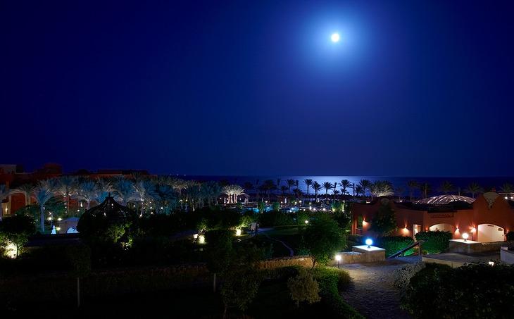 арабские ночи скачать торрент - фото 10