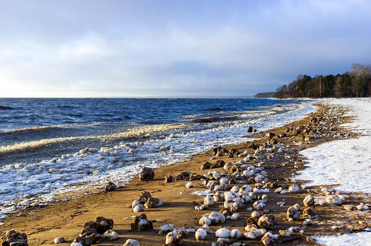 Финский залив картинки 8