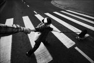 """""""ЧБ картинка с девочкой, рукой и собакой на переходе в Зеленограде """" Фотографы..."""