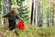 Конспект экскурсии в лес(из опыта работы)