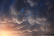 Вымеобразные облака (Mammatus clouds) (Янковой Антон)