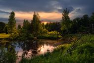 вечером на болоте